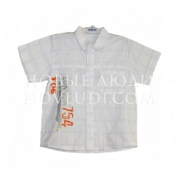 Рубашка для мальчика Amadeo